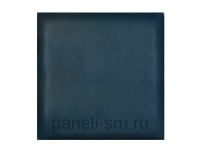 stella-clean-dark-blue
